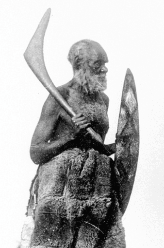 aboriginal weapons | Aborigines weapons | sell aboriginal