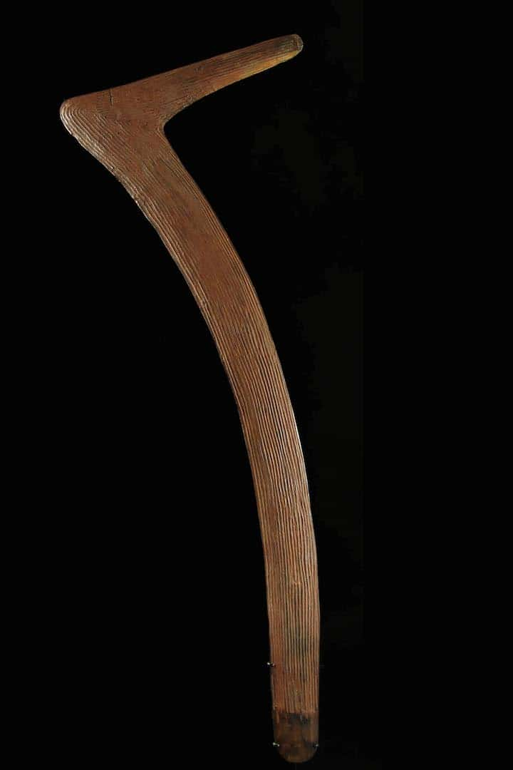 Central desert killing boomerang