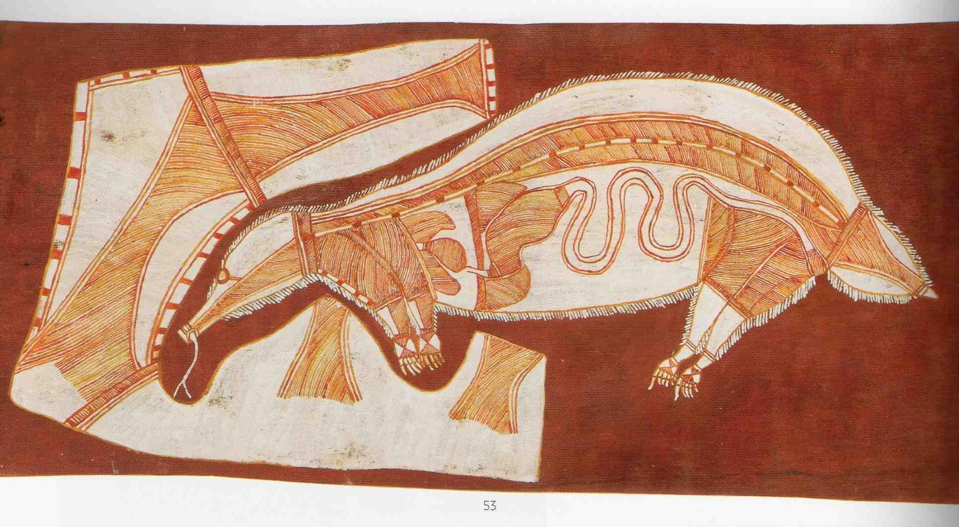 Nabardayal echidna