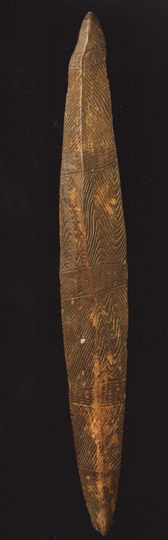 Narrow-shield-se-aus