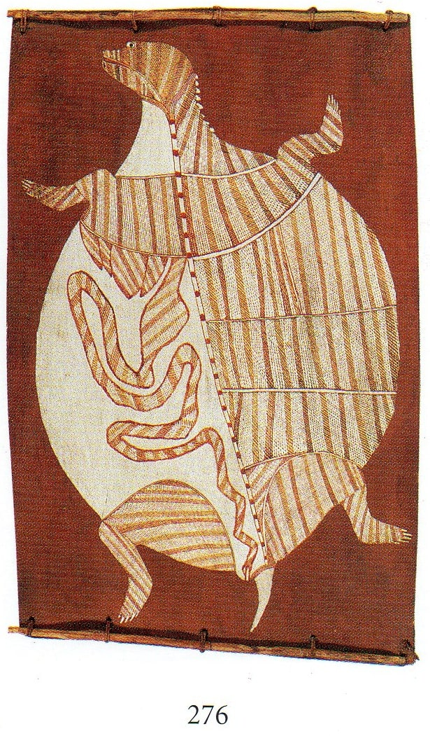 Nguleingulei turtle