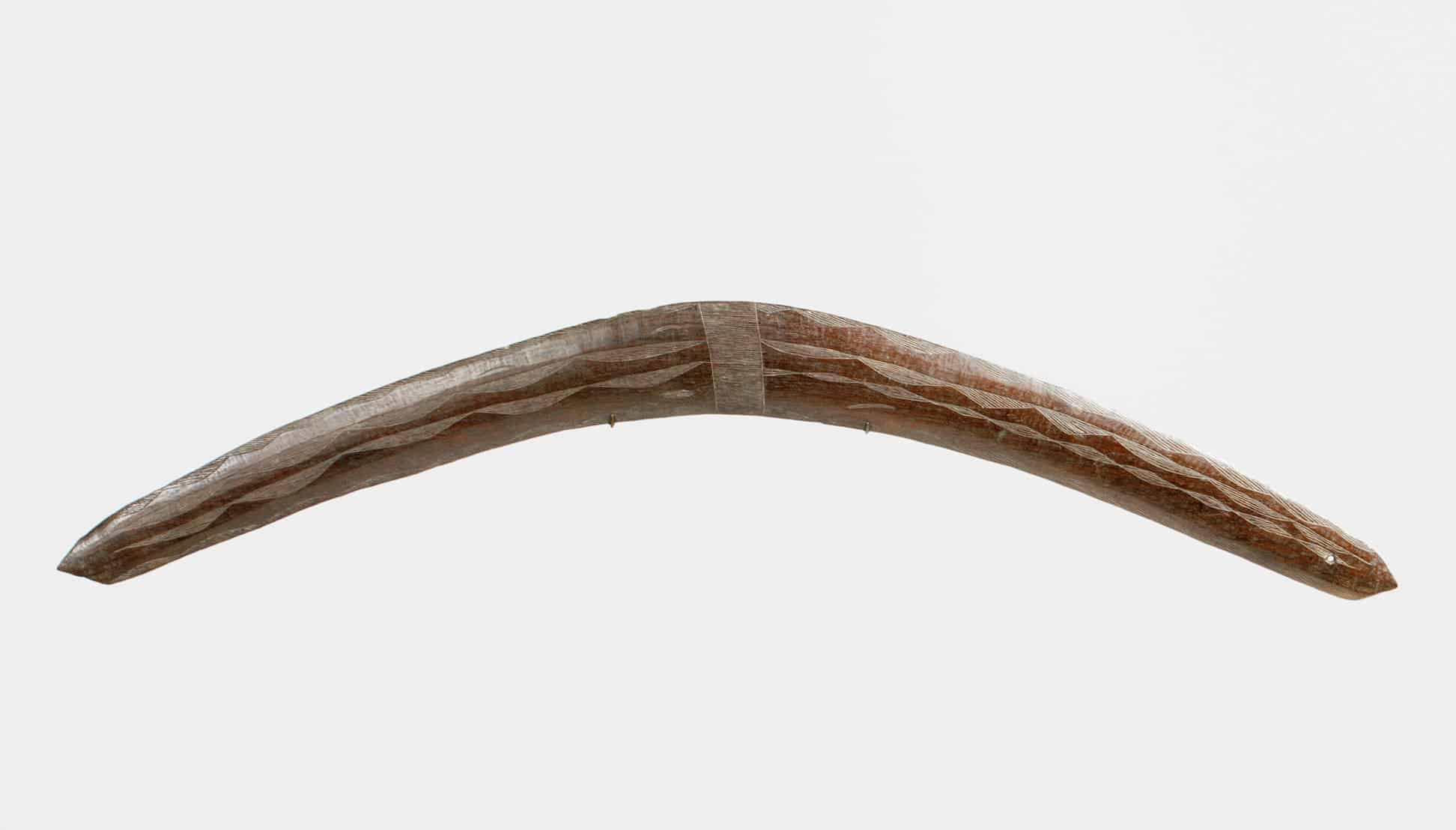 Queensland boomerang