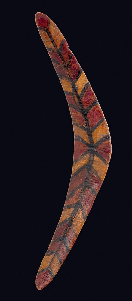 Rain forest boomerang