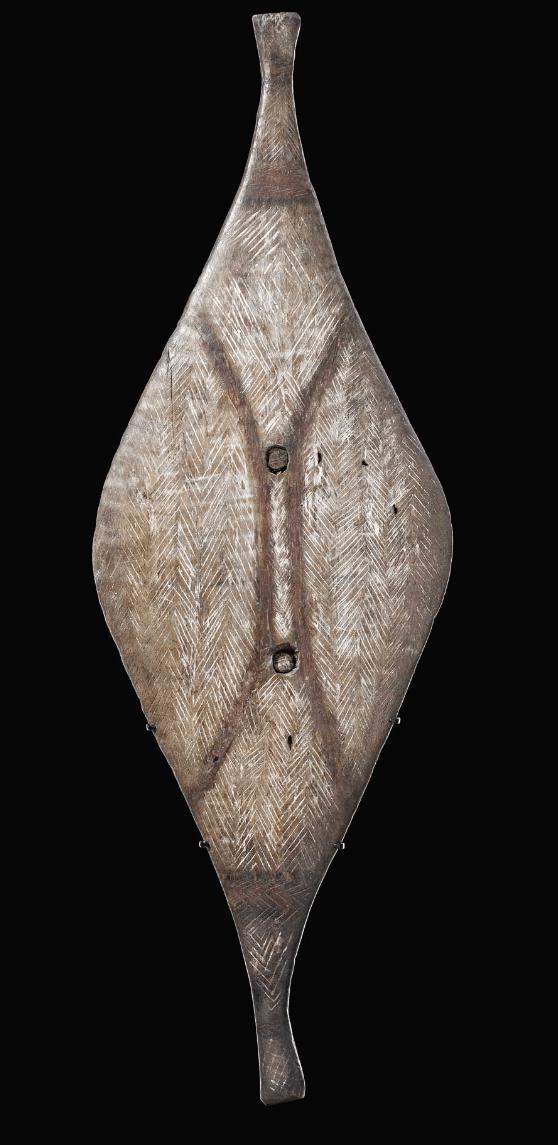 Shield-broad-Murray-river-SA