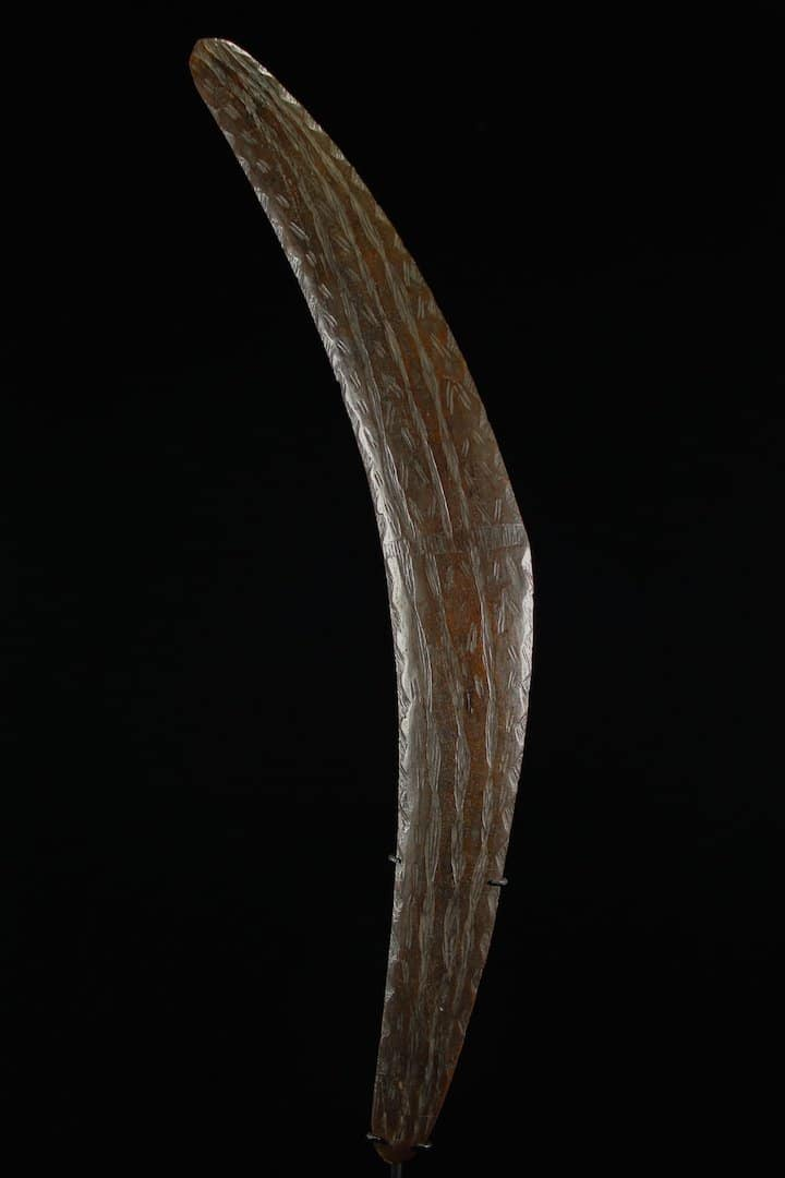 South-Queensland-boomerang