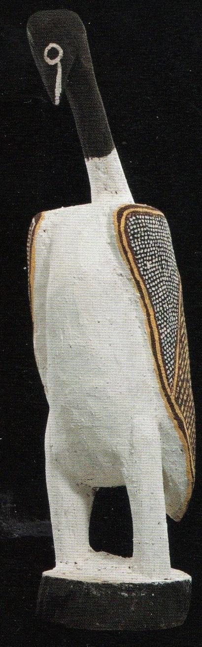 Declan Apuatimi bird 3