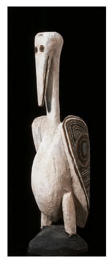 Declan Apuatimi pelican