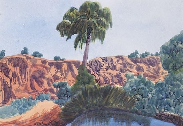 Otto Pareroultja Palm valley 2