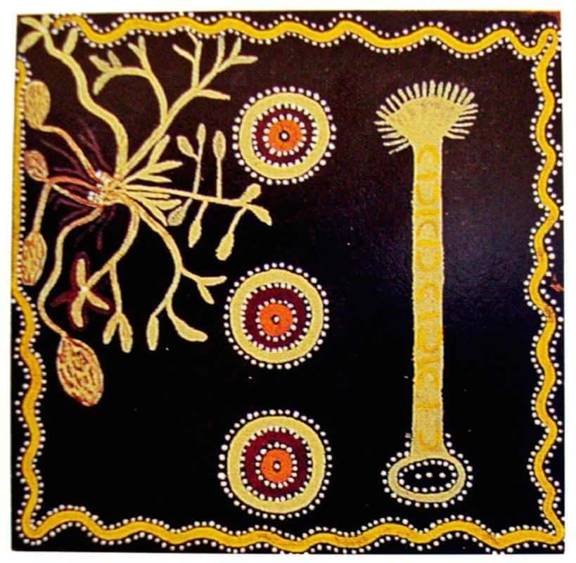 Billy Stockman Tjapaltjarri 23