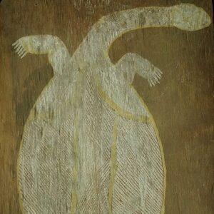 Yirawala turtle